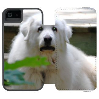 great-pyrenees-8 funda billetera para iPhone 5 watson