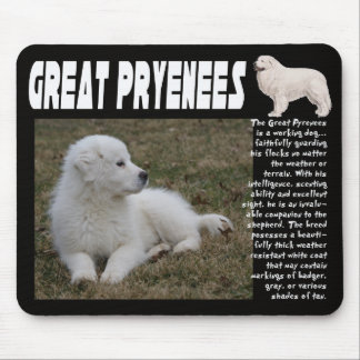 GREAT PYRENEES BREED DESCRIPTION PUPPY PHOTO MOUSE PAD