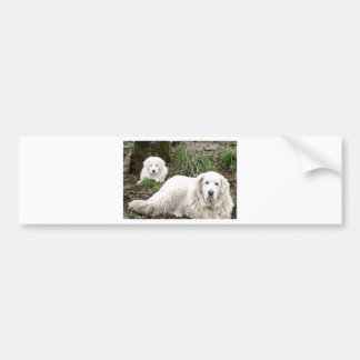 Great Pyrenees Dog and puppy Bumper Sticker