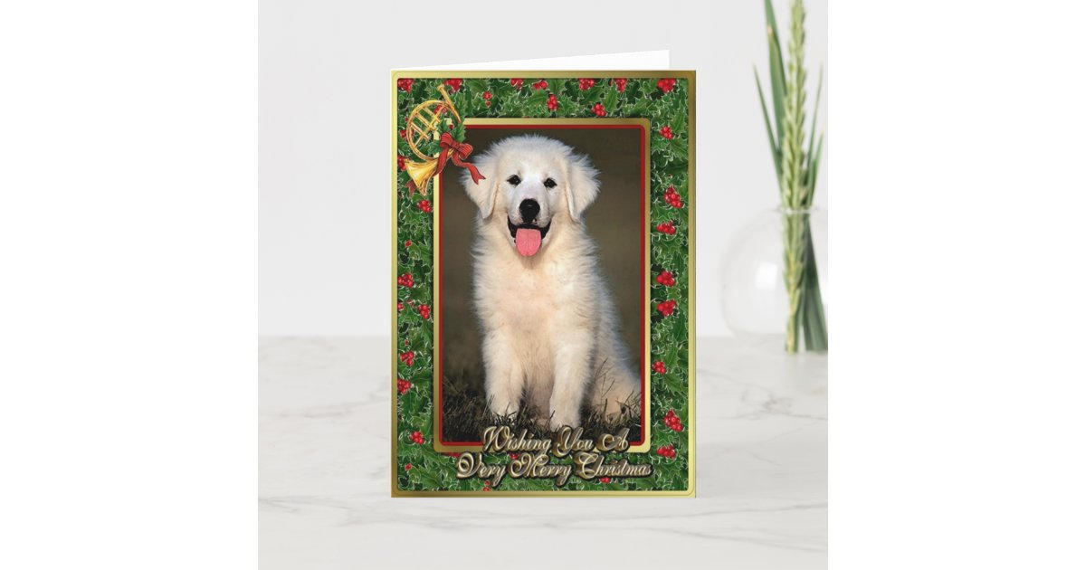 Great Pyrenees Dog Blank Christmas Card | Zazzle.com