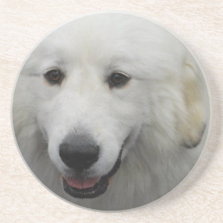 Great Pyrenees Dog Breed Coasters