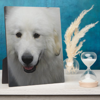 Great Pyrenees Dog Breed Plaques