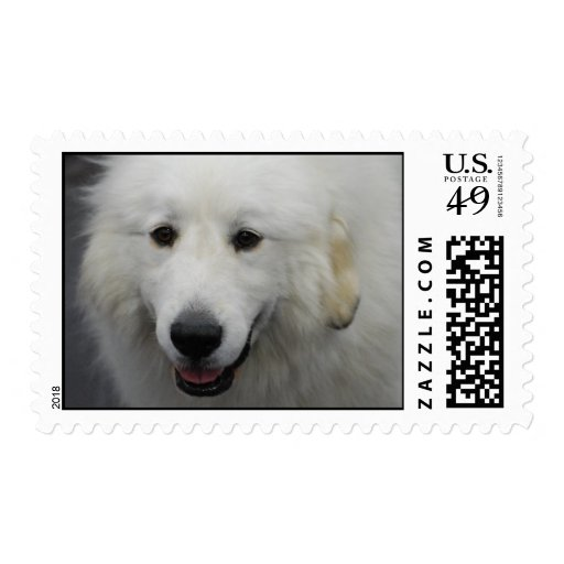 Great Pyrenees Dog Breed Stamp