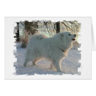 Great Pyrenees Dog Greeting Card