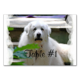 Great Pyrenees Dog Table Card
