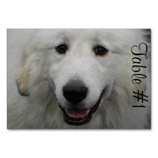 Great Pyrenees Dog Table Cards