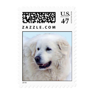 Great Pyrenees face Postage