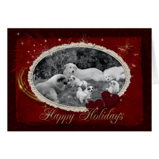 Great Pyrenees Family Holiday Card