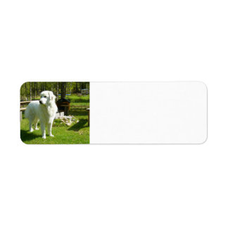 great pyrenees full 2 label