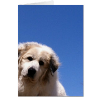 Great Pyrenees, Gentle Giant Greeting Card