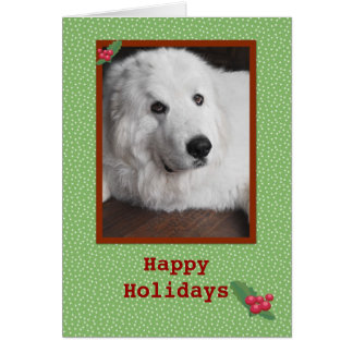 Great Pyrenees Happy Holidays Greeting Card