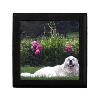 Great Pyrenees Jewelry Boxes