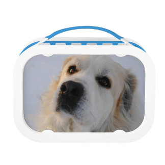 Great Pyrenees Lunchbox
