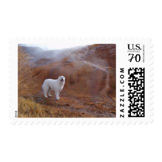 Great Pyrenees Mystic moment postage stamp