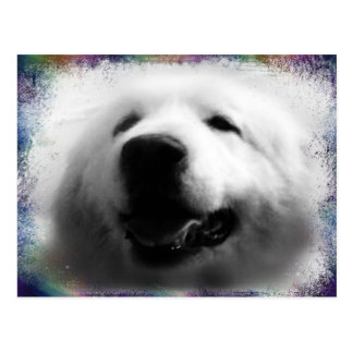 "Great Pyrenees Post Card - ""My Sweet Annie"""