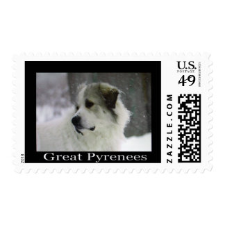 Great Pyrenees Postage
