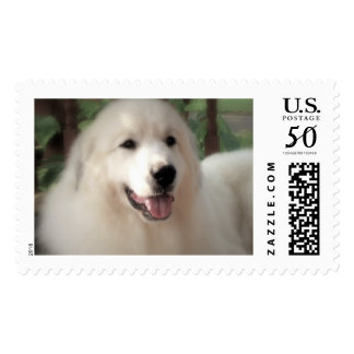 "Great Pyrenees Postage Stamp - ""Pretty Zoe"""