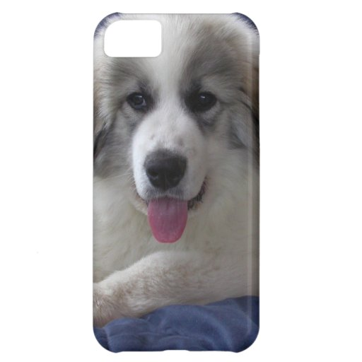 Great Pyrenees Puppy iPhone 5C Case