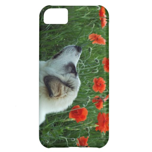 great pyrenees puppy iPhone 5C cases