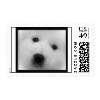 Great Pyrenees Puppy Postage Stamp