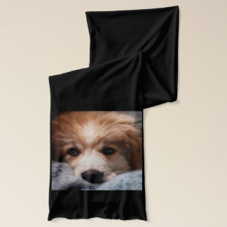 Great Pyrenees Puppy Scarf