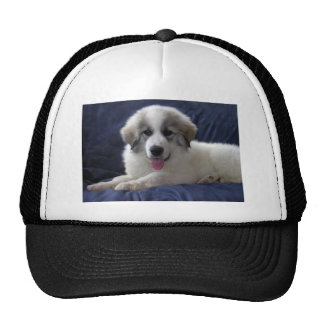 Great Pyrenees Puppy Trucker Hat