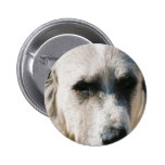 Great Pyrenees Rond Button