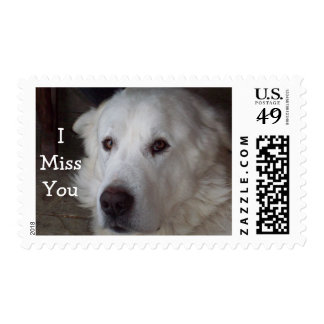Great Pyrenees saying I Miss You Postage