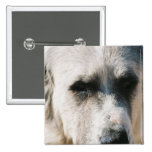 Great Pyrenees Square Pin