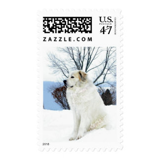Great Pyrenees Stamp