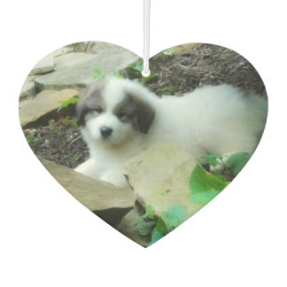 Great Pyrenees Sweet Puppy 2 Car Air Freshener