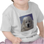 Great Pyrenees T-shirts