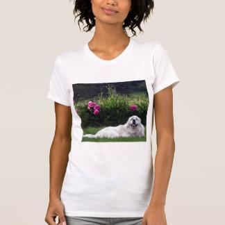 Great Pyrenees T Shirts