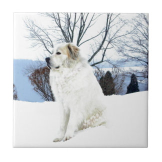 Great Pyrenees Tiles