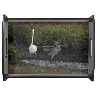Great & Reddish Egret Bird Wildlife Animal Tray