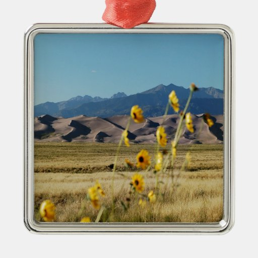 Great Sand Dunes and Flowers Ornament