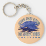 Great Sand Dunes National Park, Colorado Key Chain