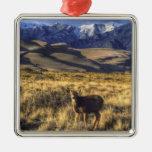Great Sand Dunes National Park, Colorado Ornament