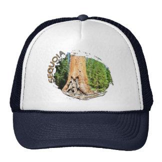 Great Sequoia Hat! Trucker Hat