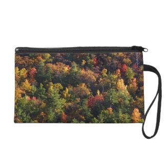 Great Smoky Mountain National Park Wristlet Clutch