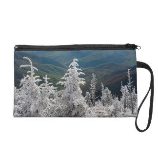 Great Smoky Mountain National Park Wristlet Purse