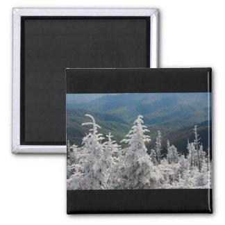 Great Smoky Mountain National Park Fridge Magnet