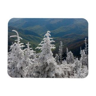Great Smoky Mountain National Park Rectangular Magnets