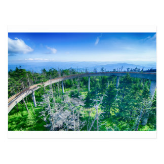 great smoky mountains clingmans dome postcards