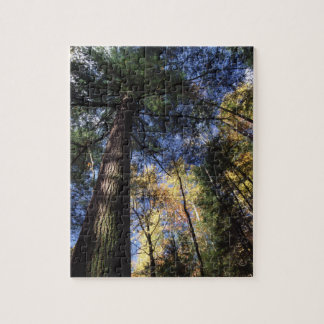Great Smoky Mountains Jigsaw Puzzle
