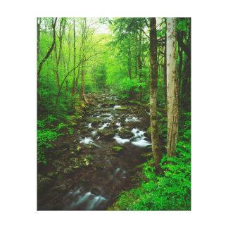 Great Smoky Mountains Lona Estirada Galerías