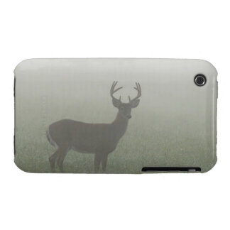 Great Smoky Mountains National Park, Tennesse, Case-Mate iPhone 3 Case