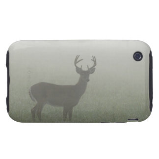 Great Smoky Mountains National Park, Tennesse, iPhone 3 Tough Case