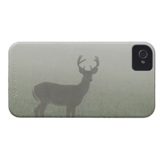 Great Smoky Mountains National Park, Tennesse, iPhone 4 Case-Mate Case