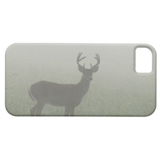 Great Smoky Mountains National Park, Tennesse, iPhone SE/5/5s Case